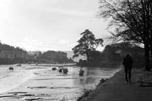 kingsbridge estuary low tide